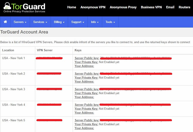 TorGuard Review: Speed Test from 4 Regions + Usability Test